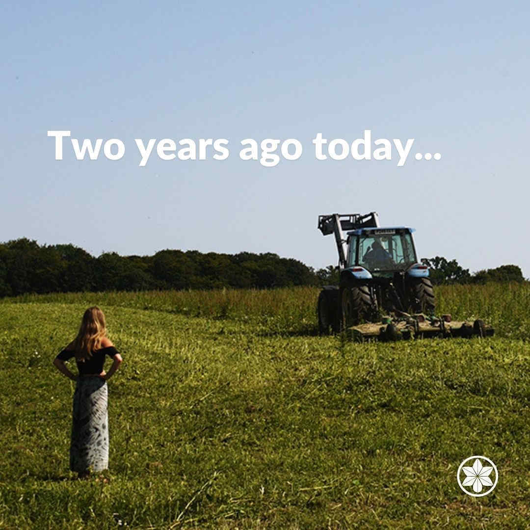 Hemp Licencing Crop Destruction. UK Hemp.